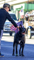 Patriotic Dog Getting A Scratch Behind His Ear At Veterans Day Parade Nashville TN