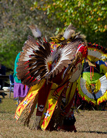 2018 Tennessee State Pow Wow