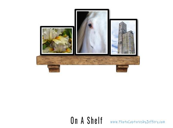 On A Shelf