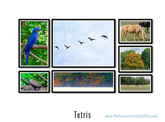 Tetris Gallery Layout