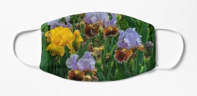 grouping iris,wide_portrait,750x1000