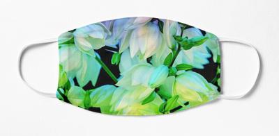 rainbow yucca,wide_portrait,750x1000