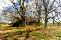 Wider view of empty abandoned farmhouse with trees