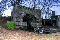 Springhouse With Three Muscovy Ducks In Water Woodlawn Cemetery Nashville TN