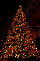 Inside Hotel Large Christmas Tree Country Christmas Nashville TN