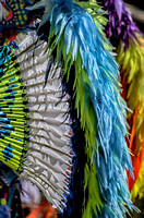 Beaded feathered bustle Native American Tennessee State Powwow