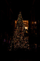 Large Christmas Tree in Delta section of hotel