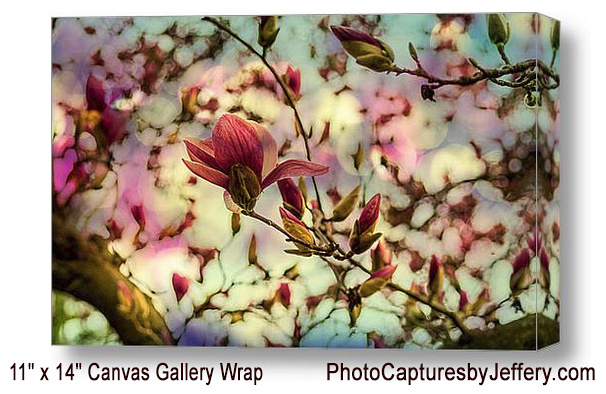 Magnolia Gallery Wrap With Text
