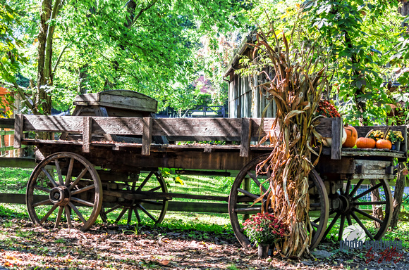Photo Captures By Jeffery Objects Old Timey Wagon With Fall