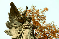 Orange color of fall winged angel Mt Olivet Cemetery