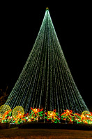 Large Light Holiday Christmas Tree Nashville TN
