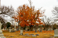 Orange Leaves Covering Mt Olivet Cemetery