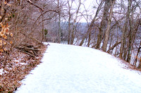 Winter Trail Radnor Lake