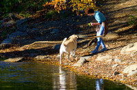 Pet owner with big dog walking out of Richland Creek with big stick
