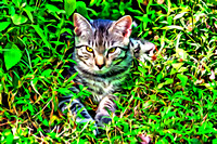 Blue Striped Tabby painting