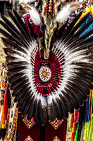A colorful tail feather on dancer Mount Juliet Powwow