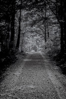 Black and white gravel country road